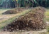 Humusation – Processus naturel de compostage humain – Accueil