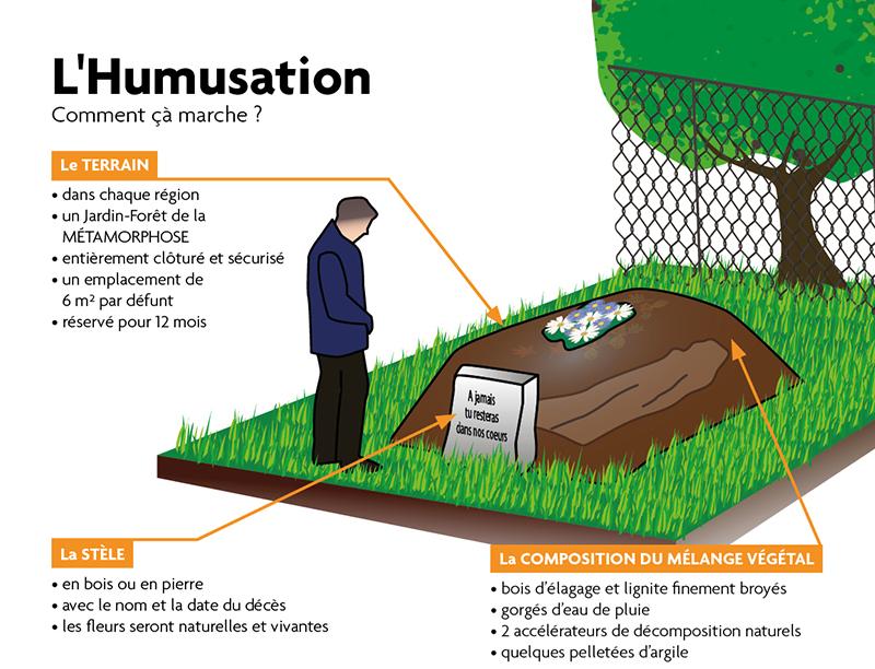 Concrètement, quelles sont les étapes de l'humusation ?